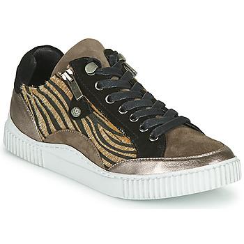 Schuhe Damen Sneaker Low Regard IDEM V6 CRIS TAUPE Braun