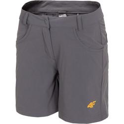 Kleidung Damen Shorts / Bermudas 4F Women's Functional Shorts Grau