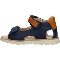 Schuhe Jungen Sandalen / Sandaletten Balducci - Sandalo blu CITA3551 BLU