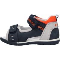 Schuhe Jungen Sandalen / Sandaletten Balducci - Sandalo blu CITA3602 BLU