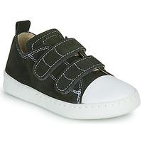 Schuhe Jungen Sneaker Low Citrouille et Compagnie NADIR Kaki