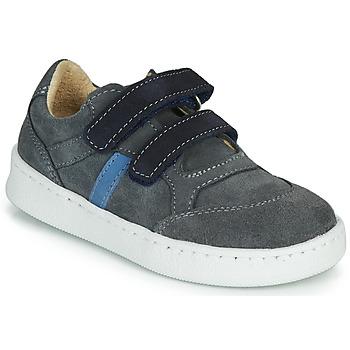 Schuhe Jungen Sneaker Low Citrouille et Compagnie NESTOK Grau / Marine