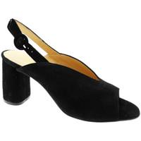 Schuhe Damen Sandalen / Sandaletten Soffice Sogno SOSO20150ne nero