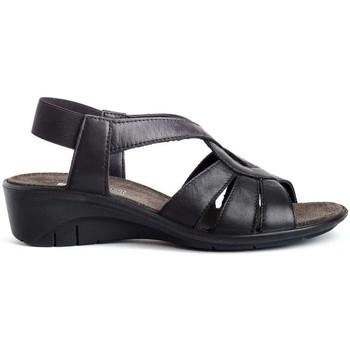 Schuhe Damen Sandalen / Sandaletten Imac 508930 Schwarz