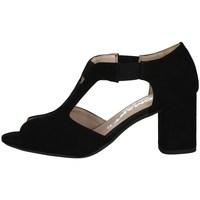 Schuhe Damen Sandalen / Sandaletten Comart 7C3343 SCHWARZ