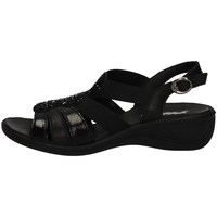 Schuhe Damen Sandalen / Sandaletten Imac 508830 BLACK