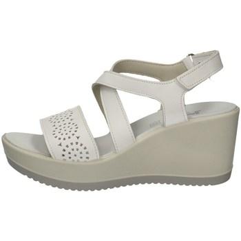 Schuhe Damen Sandalen / Sandaletten Imac 508420 WEISS