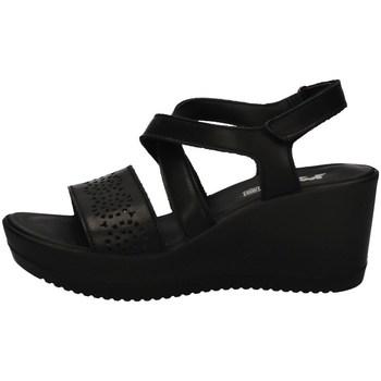 Schuhe Damen Sandalen / Sandaletten Imac 508420 BLACK