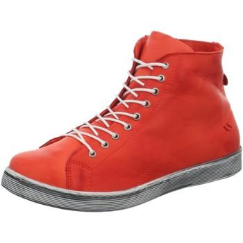 Schuhe Damen Stiefel Andrea Conti Stiefeletten Schnürboot in Rot 0341500-021 rot