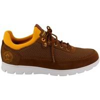 Schuhe Herren Sneaker Low Panama Jack  Beige