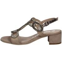 Schuhe Damen Sandalen / Sandaletten Comart 083307 TORTORA