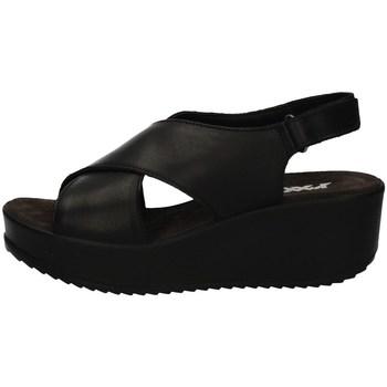 Schuhe Damen Sandalen / Sandaletten Imac 508310 BLACK