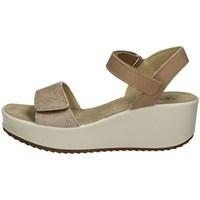 Schuhe Damen Sandalen / Sandaletten Imac 508300 Mit Keil Frau TAUPE TAUPE