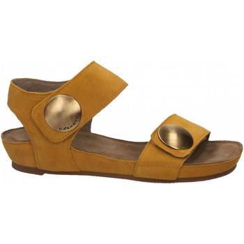 Schuhe Damen Sandalen / Sandaletten Ca Shott SUEDE sole
