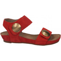 Schuhe Damen Sandalen / Sandaletten Ca Shott SUEDE rosso