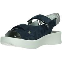 Schuhe Damen Sandalen / Sandaletten Wolky Sandaletten Globe sp K Sand blue Nub 0535013 blau