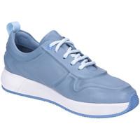 Schuhe Damen Derby-Schuhe & Richelieu Post Xchange Schnuerschuhe Post Exchange Fiona 08 4140 FIONA 08 4140 blau