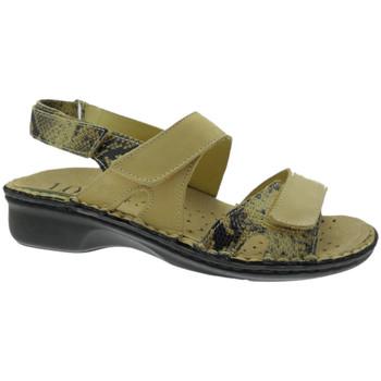 Schuhe Damen Sandalen / Sandaletten Calzaturificio Loren LOM2833ta tortora
