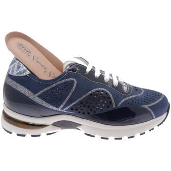 Schuhe Damen Wanderschuhe Calzaturificio Loren LOA1076bl blu