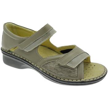 Schuhe Damen Sandalen / Sandaletten Calzaturificio Loren LOM2834to tortora