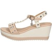 Schuhe Damen Sandalen / Sandaletten Laura Biagiotti 6167 WEISS