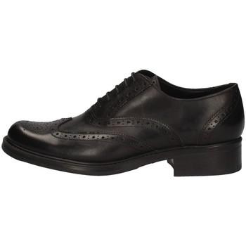 Schuhe Damen Derby-Schuhe Campanile 5022 SCHWARZ