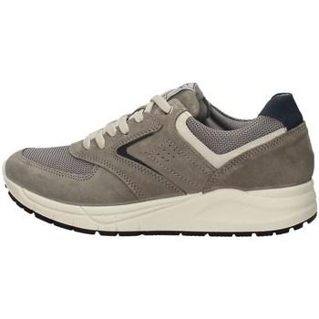 Schuhe Herren Sneaker Low Imac 503010 GRAU