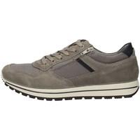 Schuhe Herren Sneaker Low Imac 502900 GRAU