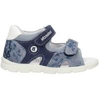 Schuhe Jungen Sandalen / Sandaletten Balocchi 103161 Blau