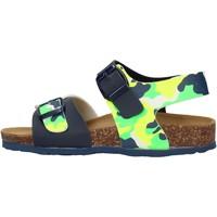 Schuhe Jungen Sandalen / Sandaletten Gold Star - Sandalo blu 1805ST-1007 BLU
