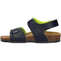 Schuhe Jungen Sandalen / Sandaletten Gold Star - Sandalo blu 8805A BLU