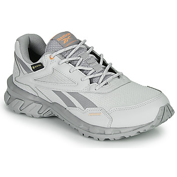 Schuhe Sneaker Low Reebok Classic RIDGERIDER 5 GTX Grau