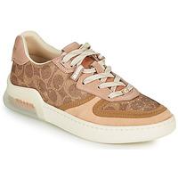 Schuhe Damen Sneaker Low Coach CITYSOLE Cognac / Beige