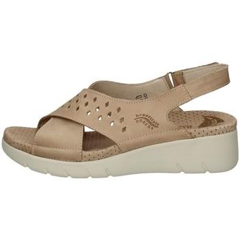 Schuhe Damen Zehensandalen Florance 41622-1 TORTORA