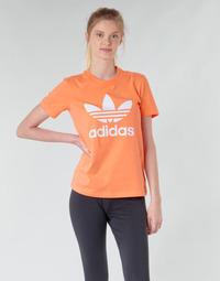 Kleidung Damen Sweatshirts adidas Originals TREFOIL TEE Orange