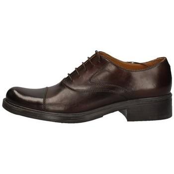 Schuhe Damen Derby-Schuhe Campanile 4970 BRAUN
