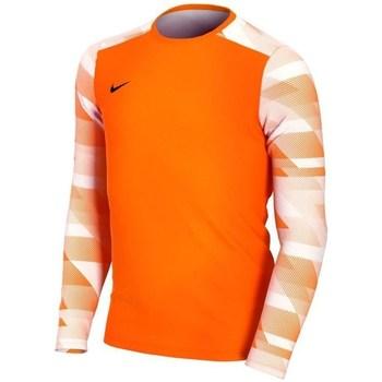 Kleidung Jungen Langarmshirts Nike JR Dry Park IV Orangefarbig