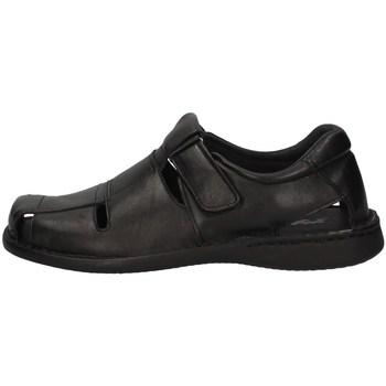 Schuhe Herren Sandalen / Sandaletten Imac 504320 SCHWARZ