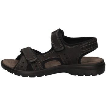 Schuhe Herren Sandalen / Sandaletten Imac 503370 SCHWARZ