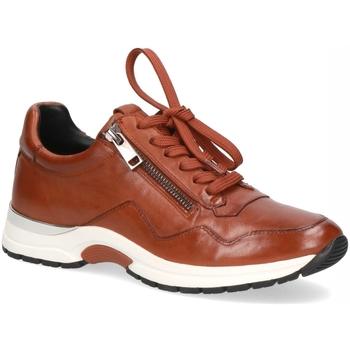 Schuhe Damen Derby-Schuhe & Richelieu Caprice Schnuerschuhe 9-9-23701-25/335 braun