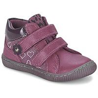 Schuhe Mädchen Boots Citrouille et Compagnie GALIS Rose