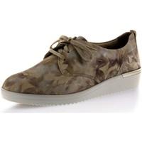 Schuhe Damen Derby-Schuhe Solidus Schnuerschuhe Kathy 51000 90301 5100090301 beige