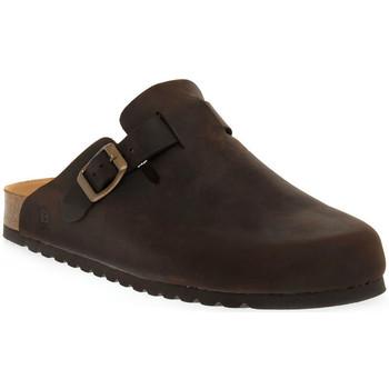 Schuhe Damen Pantoletten / Clogs Bioline MORO INGRASSATO Marrone