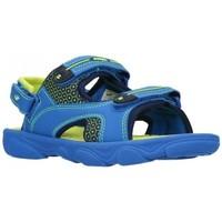 Schuhe Jungen Sportliche Sandalen Joma 2004 Royal Flour Niño Azul bleu