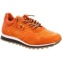 Schuhe Herren Sneaker Low Cetti Schnuerschuhe C848 ambar orange