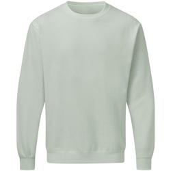 Kleidung Herren Sweatshirts Sg SG20 Grau