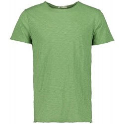 Kleidung Herren T-Shirts Scout M/m T-shirt (10184-grün-fluo) Other
