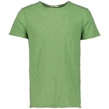 Kleidung Herren T-Shirts Scout M/m T-shirt (10184-grün-avocado) Grün