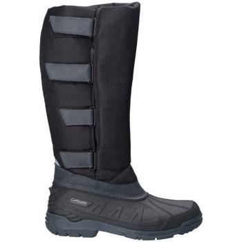 Schuhe Damen Klassische Stiefel Cotswold  Schwarz