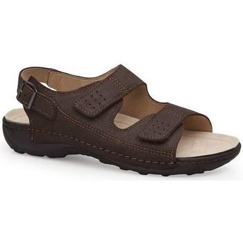 Schuhe Herren Sandalen / Sandaletten Calzamedi BECHAMP SANDALEN BRAUN